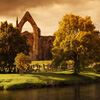 Jigsaw: Bolton Abbey