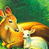Beautiful Tired Deers Puzzle