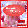 Beautiful Flowers - Find The Numbers