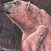 Red Polar Bears Puzzle