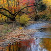 Stream In Fall Jigsaw Puzzle