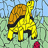 Turtle And Ball Coloring