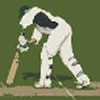 Tms Twenty20 Cricket Limited Version 10 Overs